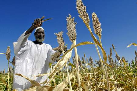 If Africa is to increase its food production potential, stakeholders from all sectors need to commit to investment.