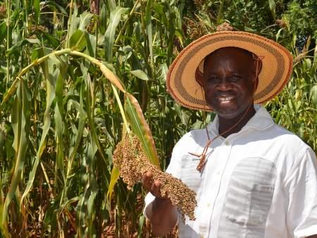 Bougouna Sogoba