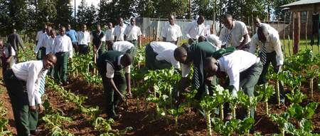 Preparation for their future life as farmers: Boys from Bwake school, Kenya.