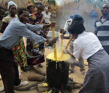 Farmers preparing yellow maize for a meal gathering in Zambia. Food security involves more than just quantity -- it also requires nutritional balance.