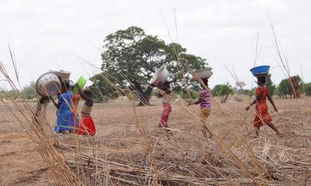 Africa may be the best placed to lead the transition to climate-smart agriculture.