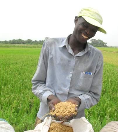 Pour permettre le développement, les sciences agricoles et l'innovation doivent être au service du plus grand nombre.