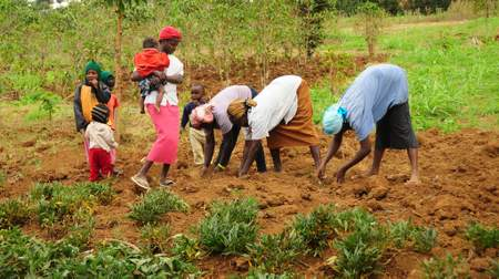 Women, although major contributors to agricultural production, are often left out of the development equation.
