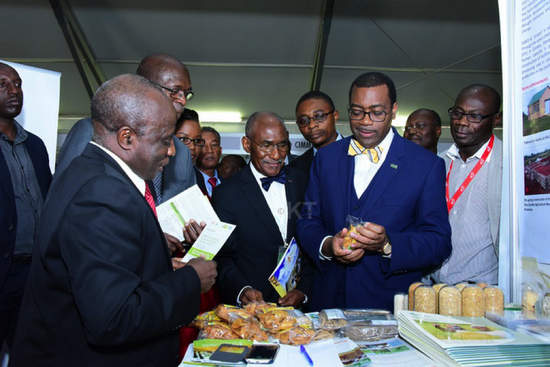 Dr Akinwumi Adesina, the President of the African Development Bank visits exhibition booths at the 7th Africa Agriculture Science Week